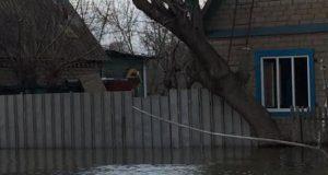 Какие-дачные-общества-затопило-в-Петропавловске