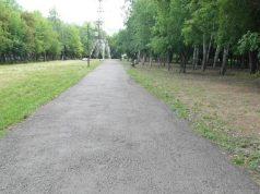 История-с-газоном-в-Петропавловске-получила-свое-продолжение