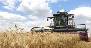 Уборка-урожая-в-СКО-пройдет-раньше-срока
