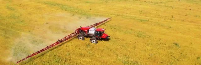 СКО-стал-лидером-по-посеву-масличных-в-Казахстане
