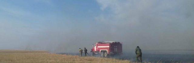 Более-тысячи-гектаров-сухостоя-горело-в-Тайыншинском-районе
