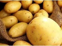 Сколько-стоит-картофель-в-других-городах-Казахстана