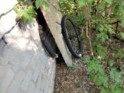 podozrevaemogo-v-serii-krazh-velosipedov-zaderzhali-rajonnye-policejskie-v-sko-1.jpeg