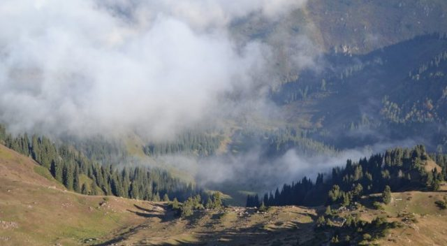 К 2030 в Казахстане начнет теплеть на 2 градуса в год